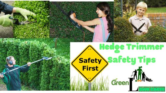 Hedge Trimmer Safety Tips