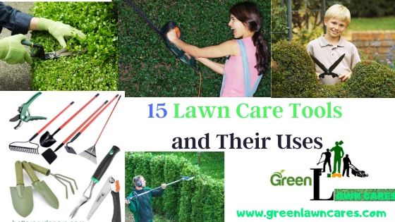 15 Lawn Care Tools and Their Uses