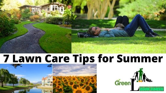 7 Lawn Care Tips for Summer