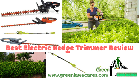 Best Electric Hedge Trimmers Review