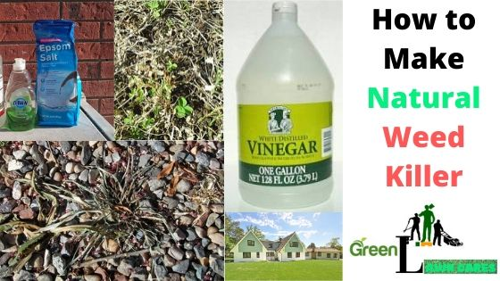 How to Make Natural Weed Killer
