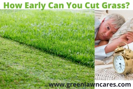 How Early Can You Cut Grass