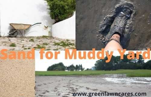 Sand for Muddy Yard