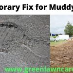 Temporary Fix for Muddy Yard