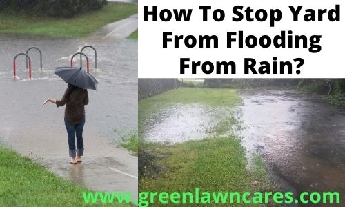 how to stop yard from flooding from rain