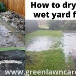 how to dry up a wet yard fast