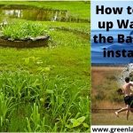 how to soak up water in backyard